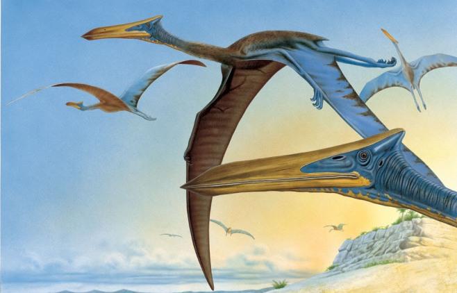 quetzalcoatlus-1